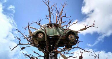 Car Free Megacities